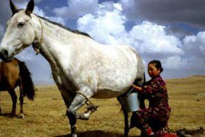 10 Oleh – oleh khas ini wajib di bawa pulang jika berkunjung ke Lombok