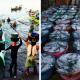 Tanjung Luar, Salah Satu Lokasi Memancing Terbaik di Lombok