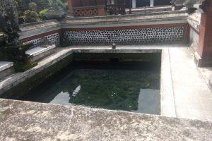 Melihat Ikan Legenda Berusia Ratusan Tahun di Pura Lingsar – Lombok